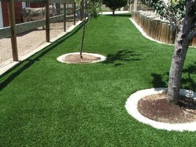 Local Colorado Springs Artificial Lawns
